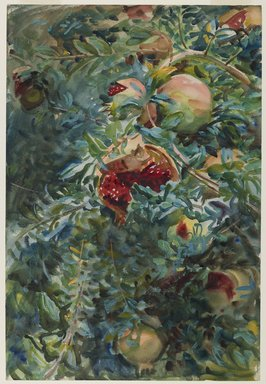 John Singer Sargent (American, 1856-1925). Pomegranates, 1908. Opaque and translucent watercolor with graphite underdrawing, 21 3/16 x 14 7/16in. (53.8 x 36.7cm). Brooklyn Museum, Purchased by Special Subscription, 09.832