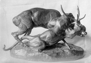 Antoine-Louis Barye (French, 1795-1875). Panther Seizing a Stag (Panthère saisissant un cerf), modeled 1836, cast date unknown. Bronze, 13 1/2 x 21 x 10 3/4 in. (34.3 x 53.3 x 27.3 cm). Brooklyn Museum, Purchased by Special Subscription, 10.108. Creative Commons-BY