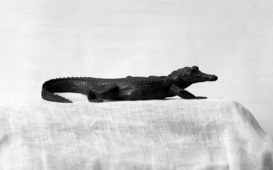 Brooklyn Museum: Crocodile