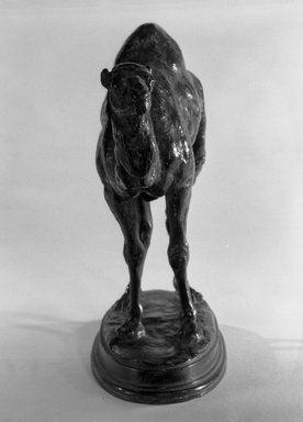 Antoine-Louis Barye (French, 1795-1875). Small Algerian Dromedary. Bronze, 5 3/4 x 7 1/2 in. (14.6 x 19.1 cm). Brooklyn Museum, Purchased by Special Subscription, 10.147. Creative Commons-BY