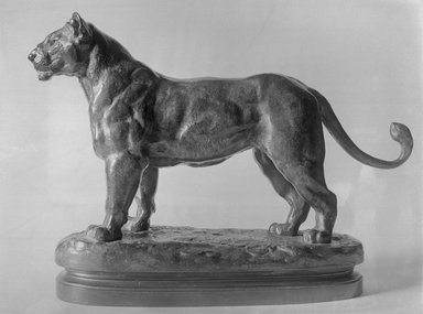 Antoine-Louis Barye (French, 1795-1875). A Senegal Lioness. Bronze, With base: 8 x 3 1/4 x 11 in. (20.3 x 8.3 x 27.9 cm). Brooklyn Museum, Purchased by Special Subscription, 10.171. Creative Commons-BY