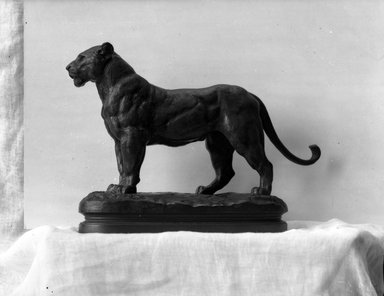 Antoine-Louis Barye (French, 1795-1875). A Lioness Standing. Bronze, With base: 8 x 3 1/4 x 11 1/2 in. (20.3 x 8.3 x 29.2 cm). Brooklyn Museum, Purchased by Special Subscription, 10.172. Creative Commons-BY