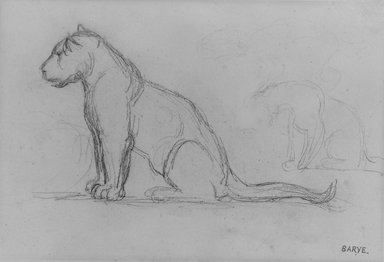 Antoine-Louis Barye (French, 1795-1875). Two Lionesses Facing Left, n.d. Graphite on laid paper, Sheet: 5 1/8 x 7 9/16 in. (13 x 19.2 cm). Brooklyn Museum, Purchased by Special Subscription, 10.218