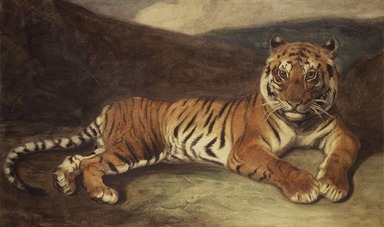 Antoine-Louis Barye (French, 1795-1875). Tiger Reclining (Tigre couché), n.d. Watercolor on thin cream-colored wove paper mounted on thick pulpboard, Sheet: 12 9/16 x 19 15/16 in. (31.9 x 50.6 cm). Brooklyn Museum, Purchased by Special Subscription, 10.99