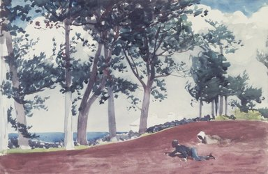 Winslow Homer (American, 1836-1910). House and Trees in Bermuda, 1899. Watercolor over pencil, 14 x 21 in. (35.6 x 53.3 cm). Brooklyn Museum, Museum Collection Fund and Special Subscription, 11.536