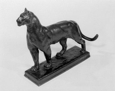 Alexander Phimister Proctor (American, 1862-1950). Puma, 1909. Bronze, 11 5/8 x 3 3/4 x 15 1/2 in., 11.4 lb. (29.5 x 9.5 x 39.4 cm, 5.2kg). Brooklyn Museum, Gift of George D. Pratt, 12.896. Creative Commons-BY