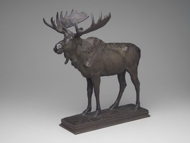 Alexander Phimister Proctor (American, 1862-1950). Moose, ca. 1893. Bronze, 18 1/2 x 9 1/2 x 16 3/4 in. (47 x 24.1 x 42.5 cm). Brooklyn Museum, Gift of George D. Pratt, 13.1088. Creative Commons-BY