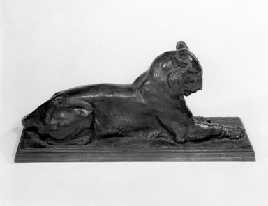 Alexander Phimister Proctor (American, 1862-1950). Princeton Tiger, 1908-1909. Bronze, 9 7/8 x 6 3/8 x 22 3/16 in. (25.1 x 16.2 x 56.4 cm). Brooklyn Museum, Gift of George D. Pratt, 14.589. Creative Commons-BY