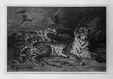 Léon-Alphonse-Alfred Prunaire (French, 1867-1900). Jeune Tigre Jouant. Wood engraving printed in bistre on loose China paper, 9 5/16 x 13 7/8 in. (23.6 x 35.2 cm). Brooklyn Museum, Gift of Samuel P. Avery, 16.496