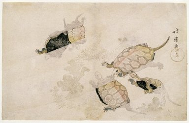 Totoya Hokkei (Japanese, 1780-1850). Tortoises Swimming among Marine Plants, 19th century. Woodblock color print, 9 5/8 x 14 15/16 in. (24.4 x 38 cm). Brooklyn Museum, Museum Collection Fund, 16.549