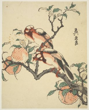 Eisen Keisai (Japanese, 1790-1848). Pomegranates and Birds, ca. 1840. Woodblock color print, 8 1/2 x 6 11/16 in. (21.6 x 17 cm). Brooklyn Museum, Museum Collection Fund, 16.551