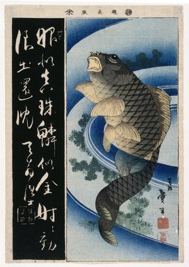 Katsushika Taito (Japanese, active 1810-1853). The Carp, 1848. Woodblock color print, 14 15/16 x 10 3/8 in. (37.9 x 26.4 cm). Brooklyn Museum, Museum Collection Fund, 16.558