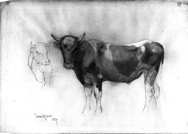 James McDougal Hart (American, 1828-1901). Study of a Bull, 1876. Graphite with white chalk on paper, Sheet: 12 15/16 x 18 5/16 in. (32.9 x 46.5 cm). Brooklyn Museum, Purchased with funds given by Mr. and Mrs. Leonard L. Milberg, 1990.101.5