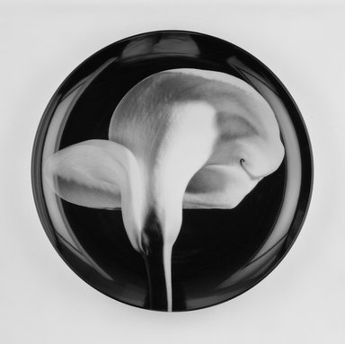 "Robert Mapplethorpe (American, 1946-1989). Plate, ""Calla Lily,"" 1989. Porcelain, 1 3/4 x 12 x 12 in. (4.4 x 30.5 x 30.5 cm). Brooklyn Museum, Gift of Swid Powell, 1990.34.4. Creative Commons-BY"