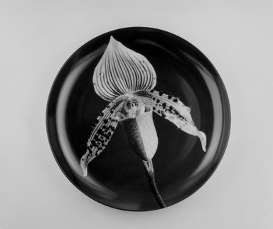 "Robert Mapplethorpe (American, 1946-1989). Plate, ""Orchid,"" 1989. Porcelain, 1 3/8 x 12 x 12 in. (3.5 x 30.5 x 30.5 cm). Brooklyn Museum, Gift of Swid Powell, 1990.34.6. Creative Commons-BY"