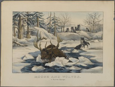 Currier & Ives (American). Moose and Wolves,  A Narrow Escape, n.d. Hand-colored lithograph on wove paper, Sheet: 11 3/4 x 15 7/8 in. (29.9 x 40.4 cm). Brooklyn Museum, Gift of Mrs. Harry Elbaum in honor of Daniel Brown, art critic, 1991.285.9