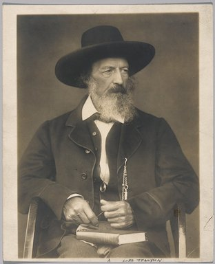 Herbert Barraud (British, active 1888-1891). Lord Tennyson, n.d. Gelatin silver photograph, 8 1/2 x 6 1/2 in. (21.6 x 16.5 cm). Brooklyn Museum, Gift of Howard Greenberg, 1991.304.1