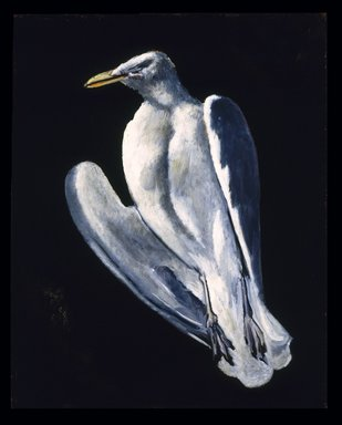 Marsden Hartley (American, 1877-1943). Gull, 1942-1943. Oil on fabricated board, 28 x 22 in. (71.1 x 55.9 cm. Brooklyn Museum, Bequest of Edith and Milton Lowenthal, 1992.11.21. © Estate of Marsden Hartley, Yale University Committee on Intellectual Property