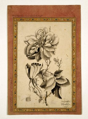 Mirza Baba (flourished 1780-1830). Rose, AH 1214 /1799-1800 CE. Ink wash on paper, Sheet: 10 5/8 x 7 5/16 in. (27 x 18.5 cm). Brooklyn Museum, Gift of the Asian Art Council, 1993.58