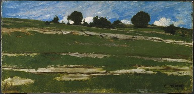 Constant Troyon (French, 1810-1865). Hillside with Rocky Outcrops, ca. 1850. Oil on panel, 11 7/8 x 24 3/8 in. (30.2 x 61.9 cm). Brooklyn Museum, Healy Purchase Fund B and gift of Marion Gans, by exchange, 1994.5