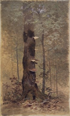 Francis Hopkinson Smith (American, 1838-1915). In the Woods, 1877. Transparent and opaque watercolor and black chalk on beige, thick, rough-textured woodpulp board, 26 7/16 x 16 1/16 in. (67.2 x 40.8 cm). Brooklyn Museum, Gift of the American Art Council, 1994.65