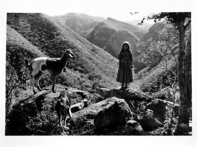 Brooklyn Museum: Rosa and Goats on Mountain Top