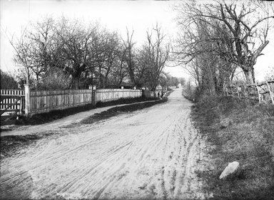 Daniel Berry Austin (American, born 1863, active 1899-1909). Neck Road at Conover's near Avenue V, Gravesend, Brooklyn, October 1899. Gelatin silver glass dry plate negative Brooklyn Museum, Brooklyn Museum/Brooklyn Public Library, Brooklyn Collection, 1996.164.1-110