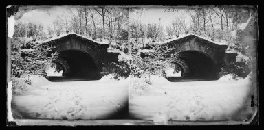 George Bradford Brainerd (American, 1845-1887). Bridge, Prospect Park, Brooklyn, ca. 1872-1887. Collodion silver glass wet plate negative Brooklyn Museum, Brooklyn Museum/Brooklyn Public Library, Brooklyn Collection, 1996.164.2-1050