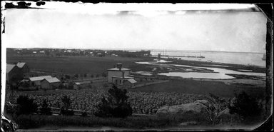 George Bradford Brainerd (American, 1845-1887). Orient, Long Island, ca. 1872-1887. Collodion silver glass wet plate negative Brooklyn Museum, Brooklyn Museum/Brooklyn Public Library, Brooklyn Collection, 1996.164.2-1058