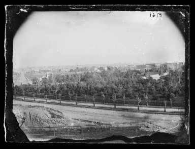 George Bradford Brainerd (American, 1845-1887). West View, Prospect Park, Brooklyn, ca. 1872-1887. Collodion silver glass wet plate negative Brooklyn Museum, Brooklyn Museum/Brooklyn Public Library, Brooklyn Collection, 1996.164.2-1613