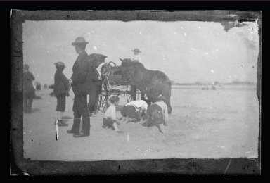 George Bradford Brainerd (American, 1845-1887). Horse and Carriage, Coney Island, Brooklyn, ca. 1885. Dry negative plate Brooklyn Museum, Brooklyn Museum/Brooklyn Public Library, Brooklyn Collection, 1996.164.2-2107