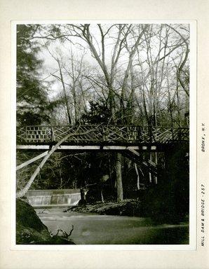 George Bradford Brainerd (American, 1845-1887). Mill Dam and Bridge, Bronx, New York, ca. 1872-1887. Collodion silver glass wet plate negative Brooklyn Museum, Brooklyn Museum/Brooklyn Public Library, Brooklyn Collection, 1996.164.2-257