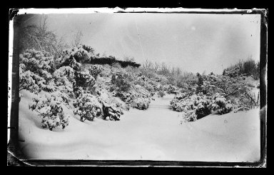 George Bradford Brainerd (American, 1845-1887). Rose Arbor from Below, Prospect Park, Brooklyn, ca. 1872-1887. Collodion silver glass wet plate negative Brooklyn Museum, Brooklyn Museum/Brooklyn Public Library, Brooklyn Collection, 1996.164.2-266