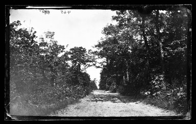 George Bradford Brainerd (American, 1845-1887). Road to Quogue, Long Island, ca. 1872-1887. Collodion silver glass wet plate negative Brooklyn Museum, Brooklyn Museum/Brooklyn Public Library, Brooklyn Collection, 1996.164.2-465