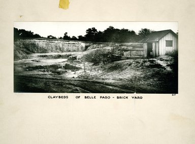 Clay Beds of Bellpage Brick Yard