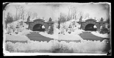 George Bradford Brainerd (American, 1845-1887). Bridge, Prospect Park, Brooklyn, ca. 1872-1887. Collodion silver glass wet plate negative Brooklyn Museum, Brooklyn Museum/Brooklyn Public Library, Brooklyn Collection, 1996.164.2-716