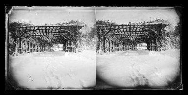 George Bradford Brainerd (American, 1845-1887). Rose Arbor in Winter, Prospect Park, Brooklyn, ca. 1872-1887. Collodion silver glass wet plate negative Brooklyn Museum, Brooklyn Museum/Brooklyn Public Library, Brooklyn Collection, 1996.164.2-726