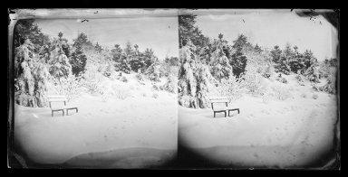 George Bradford Brainerd (American, 1845-1887). Snow Scene, Prospect Park, Brooklyn, ca. 1872-1887. Collodion silver glass wet plate negative Brooklyn Museum, Brooklyn Museum/Brooklyn Public Library, Brooklyn Collection, 1996.164.2-727