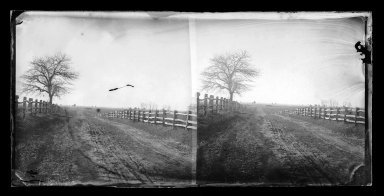 Brooklyn Museum: Down the Meadow Lane, New Lots, Brooklyn