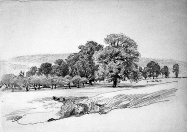 William Trost Richards (American, 1833-1905). Landscape with Trees, 1870s-1880s. Graphite on white wove paper mounted to board, Sheet: 10 x 14 1/16 in. (25.4 x 35.7 cm). Brooklyn Museum, Gift of George Klauber, 1996.233