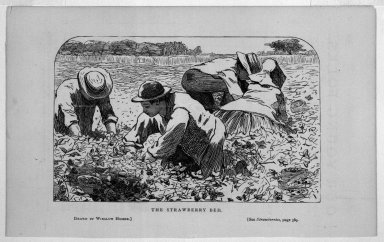 Winslow Homer (American, 1836-1910). The Strawberry Bed, 1868. Wood engraving, Image: 3 3/4 x 6 in. (9.5 x 15.2 cm). Brooklyn Museum, Gift of Harvey Isbitts, 1998.105.111