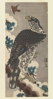 Eisen Keisai (Japanese, 1790-1848). Hawk on a Snowy Pine Branch, 1830. Woodblock print; ink and color on paper, 13 1/4 x 6 in.  (33.7 x 15.2 cm). Brooklyn Museum, Gift of Dr. Eleanor Z. Wallace in memory of her husband, Dr. Stanley L. Wallace, 1999.139.2