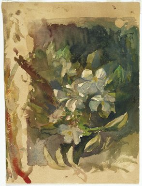 John La Farge (American, 1835-1910). Apple Blossoms in Sunlight, ca. 1870s. Watercolor and graphite on cream, thick, rough textured wove paper, 11 x 8 in. (27.9 x 20.3 cm). Brooklyn Museum, Bequest of Christiana C. Burnett, great-niece of the artist, 2001.47.2
