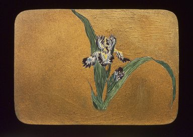 Christopher Grant La Farge (American, 1862-1938). Small Card Decorated with Iris, ca. 1880. Watercolor and metallic ink on very thin card stock, 3 1/16 x 4 1/4 in. (7.8 x 10.8 cm). Brooklyn Museum, Bequest of Christiana C. Burnett, 2001.47.6