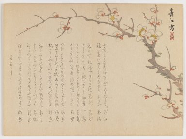 Seikô Okuhara (Japanese, 1837-1913). Blossoming Plum Branch, 1861. Woodblock print, horizontal Chûban yoko-e format, 7 1/8 x 9 3/4 in. (18.1 x 24.8 cm). Brooklyn Museum, Gift of Dr. Eleanor Z. Wallace in memory of her husband, Dr. Stanley L. Wallace, 2002.121.18