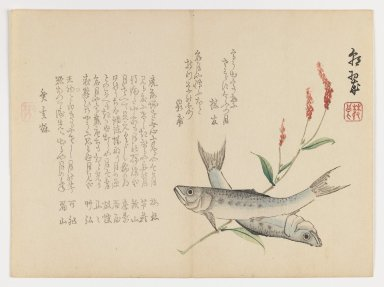 Brooklyn Museum: Fish with Reed
