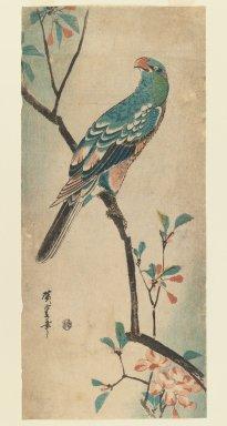 Utagawa Hiroshige (Ando) (Japanese, 1797-1858). Green Parrot on a branch with red flowers, ca. 1830. Woodblock print, Image: 14 3/8 x 6 7/16 in. (36.5 x 16.3 cm). Brooklyn Museum, Gift of Dr. Eleanor Z. Wallace in memory of her husband, Dr. Stanley L. Wallace, 2005.79.4