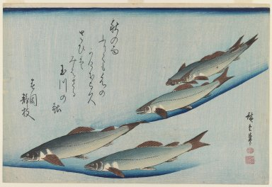 Utagawa Hiroshige (Ando) (Japanese, 1797-1858). School of Five Seat Trout, ca. 1835. Woodblock color print, 9 3/4 x 14 7/16 in. (24.8 x 36.7 cm). Brooklyn Museum, Bequest of Dr. Eleanor Z. Wallace, 2007.31.10