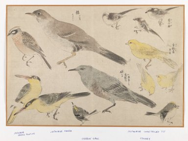 Birds in Okyo Style. Woodblock color print, 10 3/16 x 15 in. (25.9 x 38.1 cm). Brooklyn Museum, Gift of the Estate of Dr. Eleanor Z. Wallace, 2007.32.118