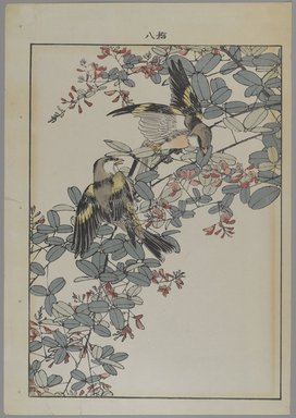 [Untitled] (Two Birds with Pink Flowers). Print, Other (Sight): 12 3/16 x 8 7/16 in. (31 x 21.4 cm). Brooklyn Museum, Gift of the Estate of Dr. Eleanor Z. Wallace, 2007.32.122